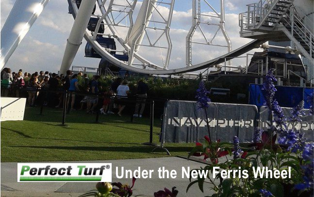 Perfect Turf used under the Navy Pier Ferris Wheel.