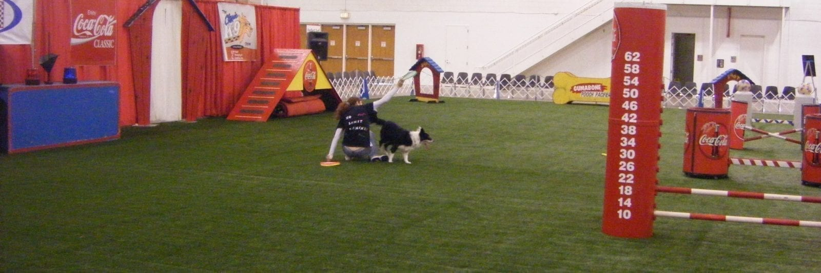 Agility 69 used as a dog agility course